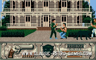 Wild Streets original screenshot